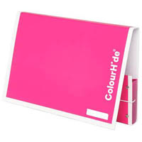 COLOURHIDE MY HANDY DOCUMENT BOX A4 PINK