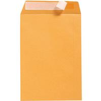 CUMBERLAND DL ENVELOPES POCKET STRIP SEAL 85GSM 110 X 220MM GOLD BOX 500