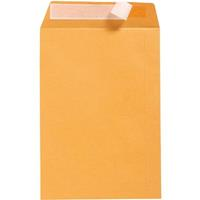 CUMBERLAND ENVELOPES POCKET STRIP SEAL 100GSM 380 X 255MM GOLD BOX 250