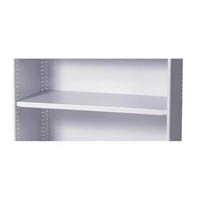 STEELCO EXTRA SHELF 900 X 400MM WHITE SATIN